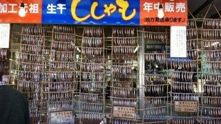 カネダイ大野商店